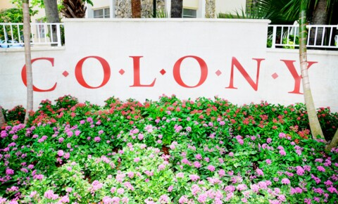 Apartments Near CAU Colony at Dadeland for Carlos Albizu University Students in Miami, FL