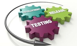 Software Testing Management