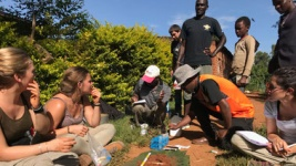 Massachusetts Online Courses As above, so below: An introduction to soils, ecosystems and livelihoods in the Tropics for University of Massachusetts-Amherst Students in Amherst, MA