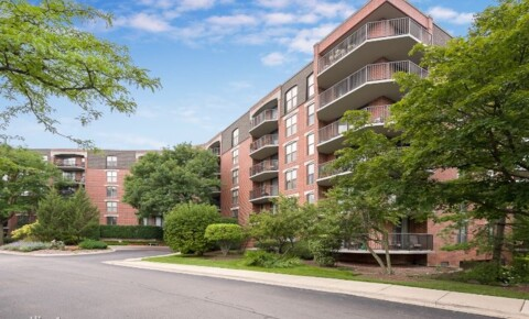 Apartments Near Lewis 509 Aurora Ave 108 for Lewis University Students in Romeoville, IL