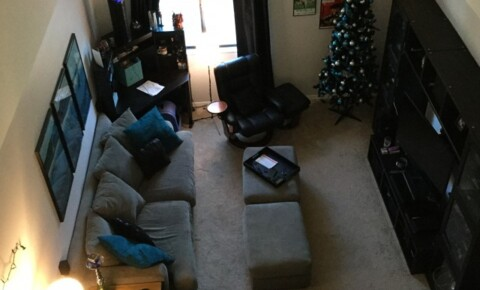 Utilities Included | College Student Apartments