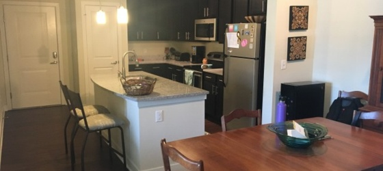 Sublease Apartment near Duke's campus