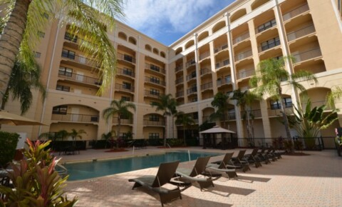 Apartments Near USF Malibu for University of South Florida Students in Tampa, FL